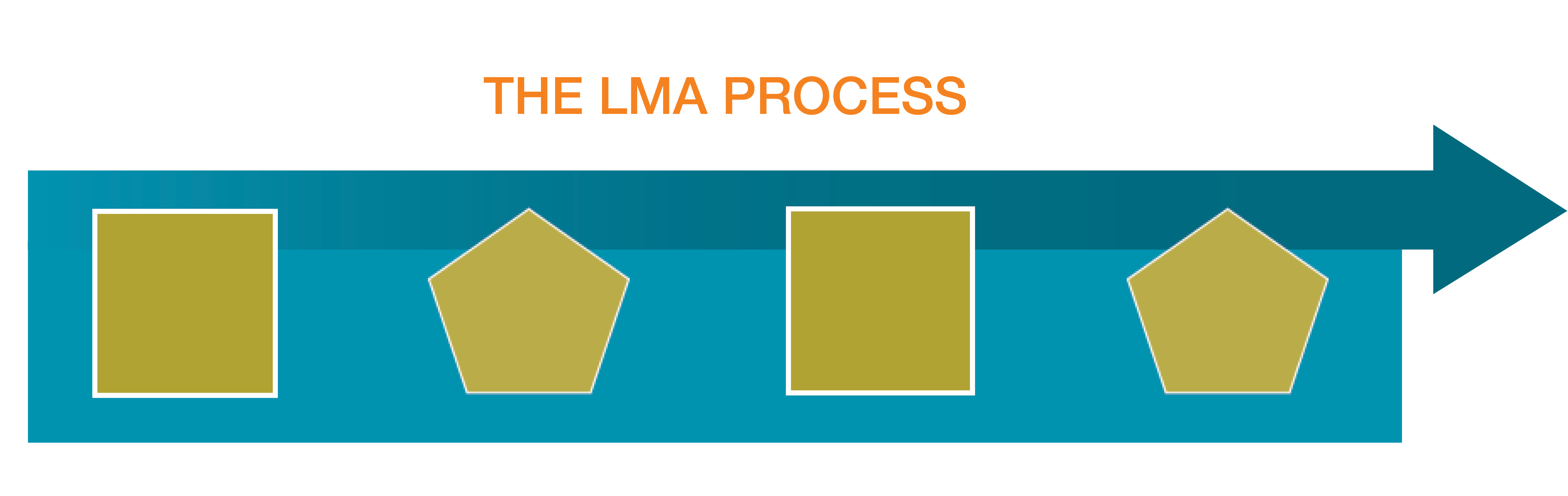 LMA Process Graphic Website